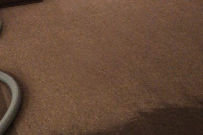 waterlogged-carpet
